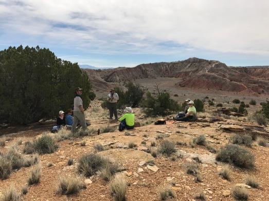white mesa bike trails hike ojito wilderness saturday april 8